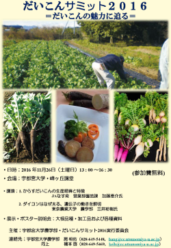 2016daikon_summit.png